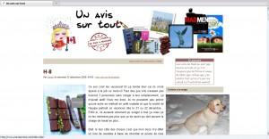 Un_avis_sur_tout_2